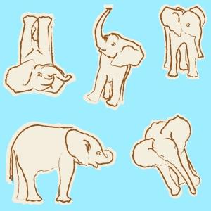 baby elephant creme n coffee