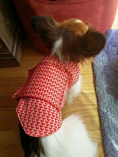 Candy modeling her orange is the new black straight jacket!