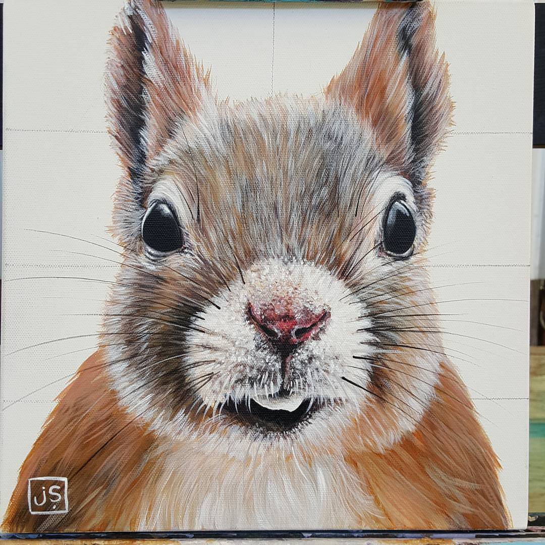 Hey give me a NUT!!! 12x12 gallery edge canvas