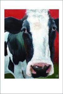 moooo cow