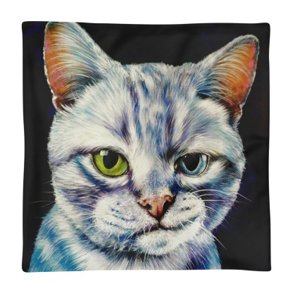 Pillow cover only